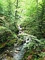 Apriltzi, Bulgaria - panoramio (28).jpg