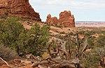 Arches National Park, Utah.jpg