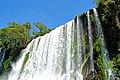 Argentina-01459 - Shower Time.... (48995010417).jpg
