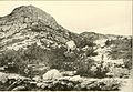At the north of Bearcamp Water; (1917) (14596798829).jpg