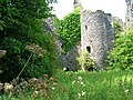 Auchans Castle north-west view.JPG