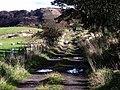 Auchinstarry Farm track - geograph.org.uk - 1526034.jpg
