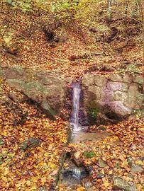 Avala potok.jpg