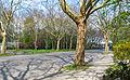 Avenue Jean Mermoz (Berlin-Tegel).jpg