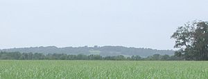 Avery Island, Louisiana - Avery Island, Louisiana, as seen from a distance across a sugarcane field