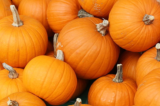 Bake these (pumpkins in Toronto)