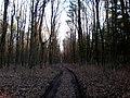 Baltiyskiy rayon, Konigsberg, Kaliningradskaya oblast', Russia - panoramio (49).jpg