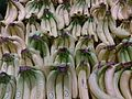 Bananas 2.jpg