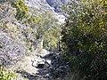 Bariloche, Río Negro, Argentina - panoramio (9).jpg