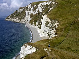 Bats head to white nothe dorset coast.jpg