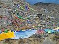 Bayi, Nyingchi, Tibet, China - panoramio (51).jpg
