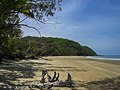 Beach Daintree National Parc - Strand (23160878485).jpg