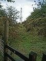 Beacon Ring Mast - geograph.org.uk - 252458.jpg
