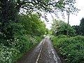 Bell Green Lane - geograph.org.uk - 175739.jpg