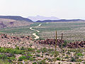 Big Bend National Park PB112593.jpg