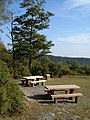 Bird of Prey viewpoint, Haldon - geograph.org.uk - 238843.jpg