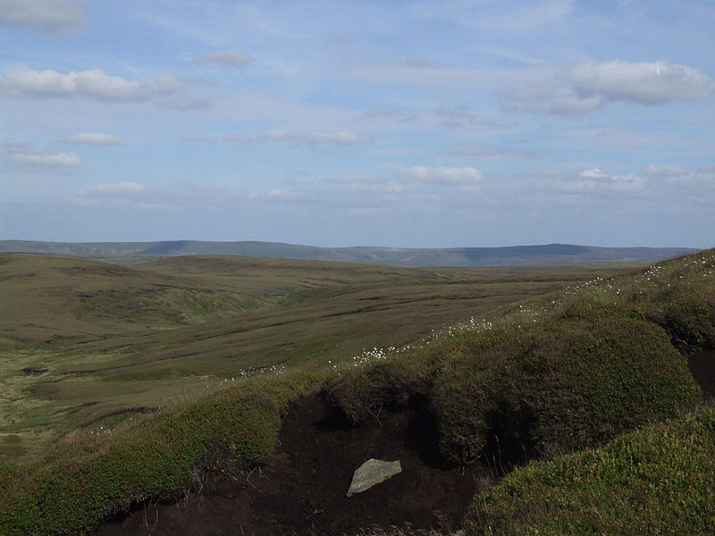 File:Bleaklow6351.JPG
