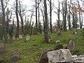 Blevice CZ Jewish cemetery 194.jpg