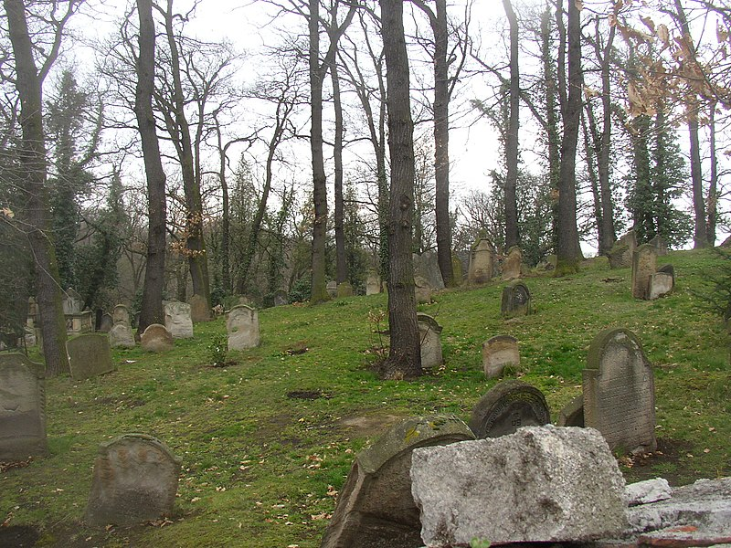 File:Blevice CZ Jewish cemetery 194.jpg