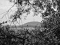Blick auf den Löbauer Sendemast - panoramio.jpg