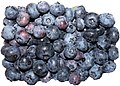Blueberries in Austria.jpg
