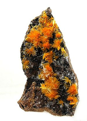 Boltwoodite - Orange to yellow boltwoodite on dark calcite matrix from Namibia (size: 5.2 x 3 x 2cm)