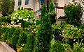 Bond garden placeholder.jpg