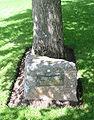 Bouais plianté 24 d'Octobre 1970 Churchill Memorial Park Saint Brélade Jèrri.jpg