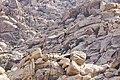 Boulder field at Rattlesnake Canyon (16583357235).jpg