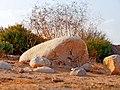 Boulders, Agur Dunes, Western Negev, IsraEL אבנים, חולות עגור, פתחת ניצנה - panoramio (1).jpg