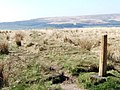 Boundary post at footpath junction - geograph.org.uk - 1271934.jpg