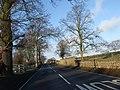Boundary wall of 'The Binns' estate - geograph.org.uk - 641445.jpg