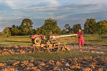 Boy plowing with a tractor at sunset in Don Det, Laos.jpg