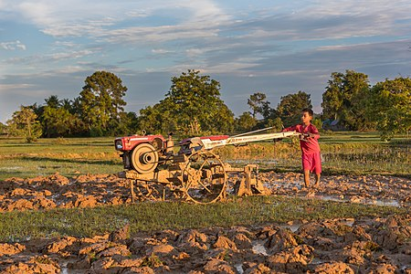 Boy plowing at sunset with a tractor