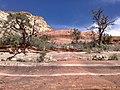 Boynton Canyon Trail, Sedona, Arizona - panoramio (107).jpg