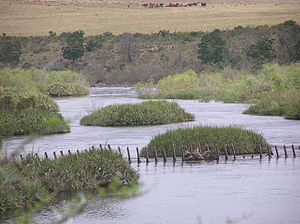 Breede River - Image: Breede River PA020053