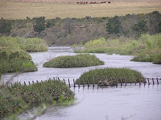 Bontebok National Park - Image: Breede River PA020053