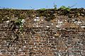 Brick wall of walled garden at Parham House, West Sussex, England.jpg
