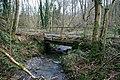 Bridge in Hafod Dingle - geograph.org.uk - 667902.jpg