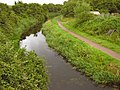 Bridgwater and Taunton Canal near Durston - geograph.org.uk - 1397033.jpg