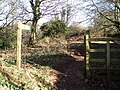 Bridleway from Colton Cross - geograph.org.uk - 104492.jpg