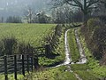 Bridleway near Northend - geograph.org.uk - 295248.jpg