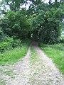 Bridleway near Stoney Batter 1 - geograph.org.uk - 475482.jpg