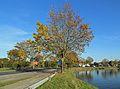 Brugge Fort Lapin R01.jpg