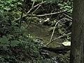 Bubovice-Srbsko - panoramio (54).jpg