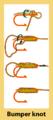 Bumper knot diagram.png