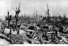 Photographie montrant les bois et forêts où les armées tentaient de se cacher ont été ravagées par les pilonnages, ici entre Arras et Bapaume