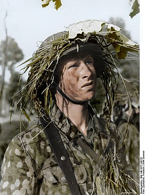 c696a26b3d888f German World War II camouflage patterns - Wikipedia