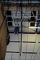 Bungee trapeze (3198739719).jpg