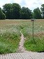 Buschwiesen, Blick aus Richtung Paul-Singer-Straße - panoramio.jpg